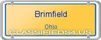 Brimfield board